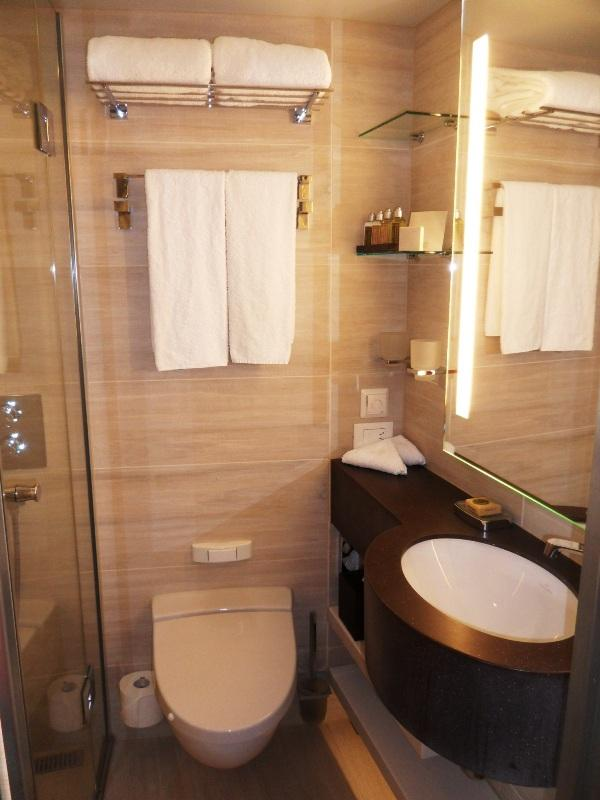 Viking Cruises, Viking Atla-Stateroom, stateroom 321, bathroom, configuration, travel, river cruise