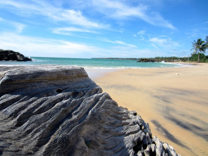 beach, Sri Lanka, travel, photography