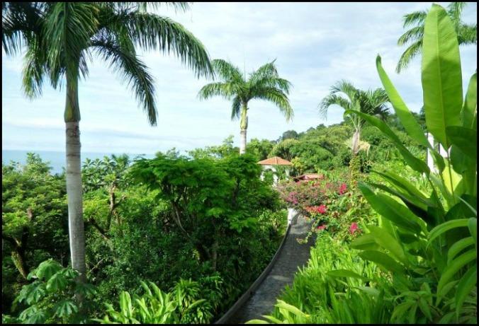 Gardens, Parador Resort, Costa Rica, nature, outdoors, photography, travel, TS76