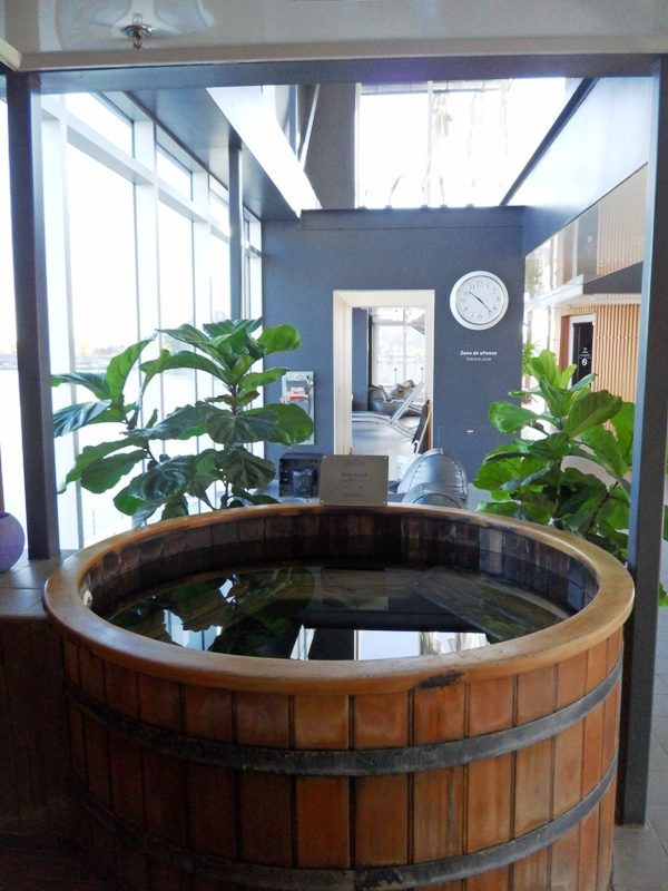 tub, cold tub, indoor tub, Bota Bota, Spa, Bota Bota Spa-sur-l'eau, Montreal, Quebec, Canada, wellness, spa travel, travel, photography, TS76