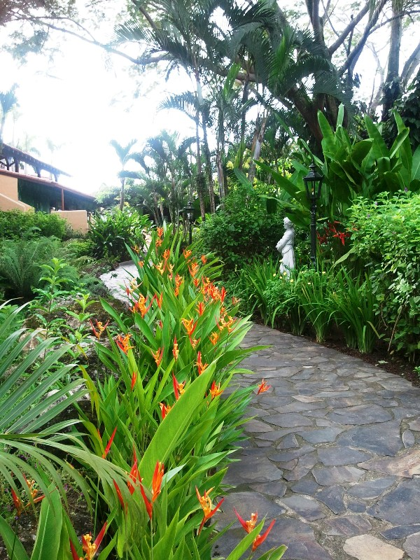 garden, pathway, Parador Resort and Spa, Quepos, Costa Rica, Manuel, Antonio, hotel, travel, accommodation, luxury, luxury travel, Central America, Centro America, photography, TS76
