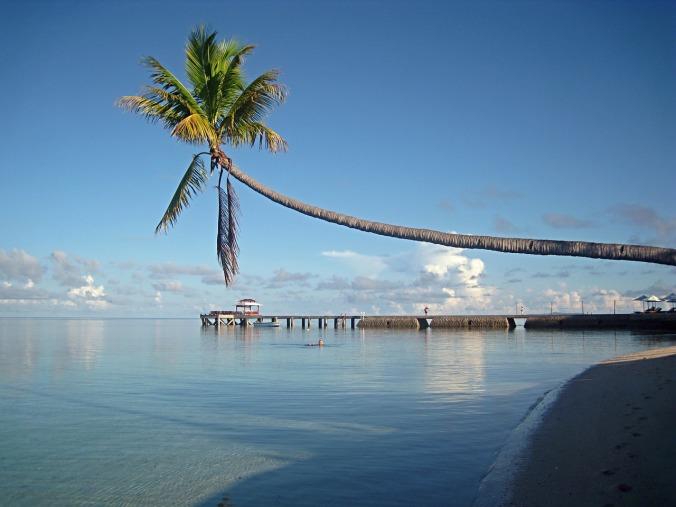Wakatobi, Sulawesi, Beach, Indonesia, travel, photography