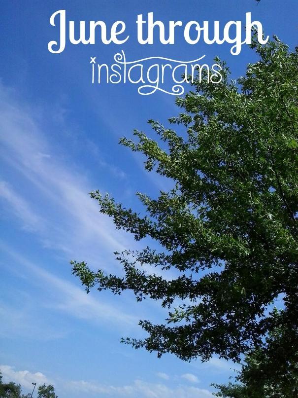 June Through Instagrams, instagrams, instagram, photography, TS76