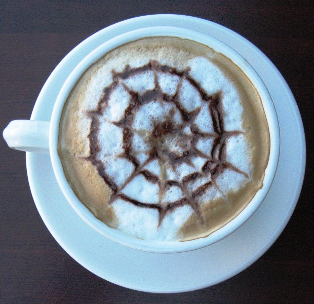 Cappuccino, art in a cup