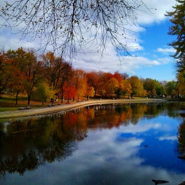 Fall is definitely one of the most beautiful seasons in Canada. This is Lafontaine Park and the fall foliage reflected on the lake. Picture card perfect right?