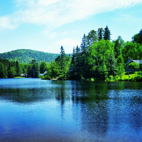 50 shades of green seen at Lac Saguay in the Laurentians, Quebec. #travel #travelblog #photography