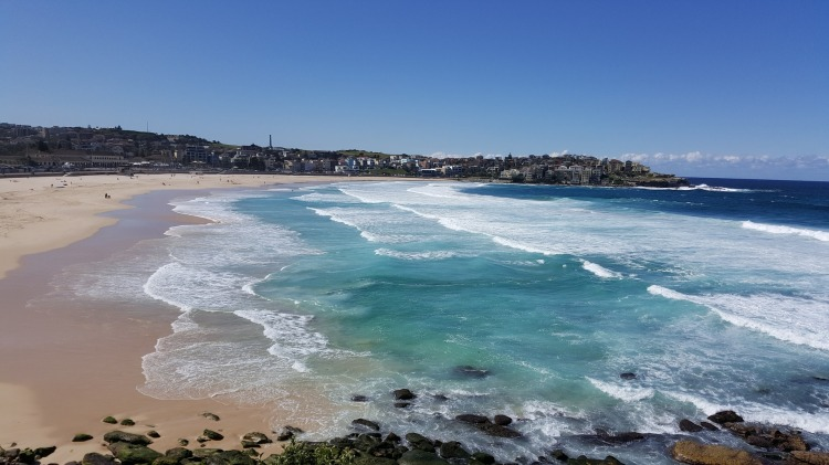 Located only 30 minutes from the Sydney city center, Bondi beach is a must visit for locals and visitors! #Australia #travel #Bondibeach #beaches